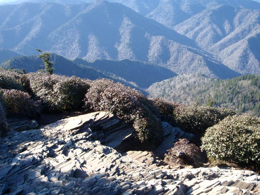 A view of the Smoky Mountains from the summit of Mt. LeConte