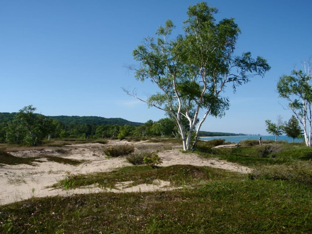 Campsite on North Manitou Island near the Old Stormer Docks
